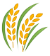 rice-icon-flat.png