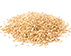 sesame-icon.png