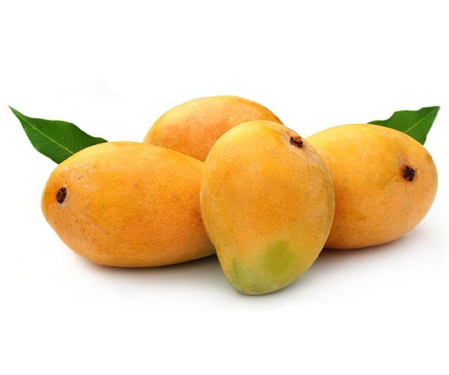 chaunsa-mango-page.jpg