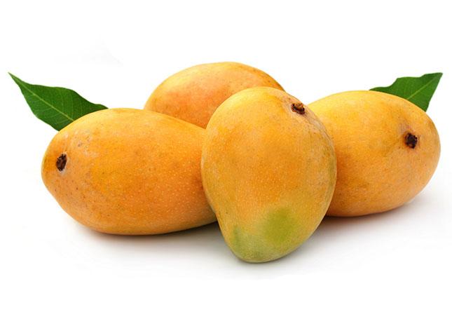 pakistani-mangoes-exporters.jpg